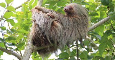 Co navštívit na Kostarice?